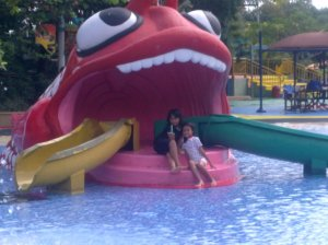 : menikmati Ocean Park sejak dini usia.